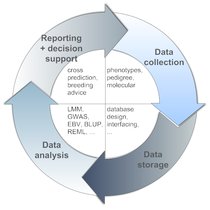 data collection and analysis pdf
